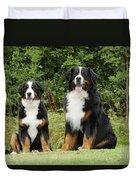 Bernese Mountain Dogs Duvet Cover