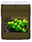 Berries On Water Duvet Cover by Kaye Menner