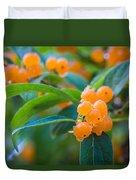 Berrylicious Duvet Cover