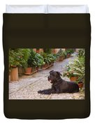 Big Black Schnauzer Dog In Italy Duvet Cover