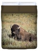 Big Buff - Bison - Buffalo - Yellowstone National Park - Wyoming Duvet Cover