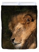 Big Cat Nap Duvet Cover