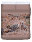 Big Horn Group Pose Duvet Cover