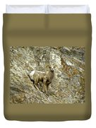 Big Horn Sheep On Mountain Duvet Cover