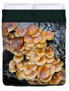 Big Mushrooms Family Duvet Cover