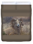 Big Rams Duvet Cover