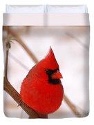 Big Red  Cardinal Bird In Snow Duvet Cover