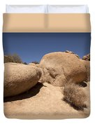 Big Rock Duvet Cover