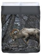 Bighorn Caught In A Blizzard Duvet Cover