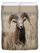 Bighorn Grassland Duvet Cover