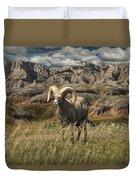 Bighorn Ram In The Badlands Duvet Cover