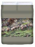 Bighorn Row Duvet Cover