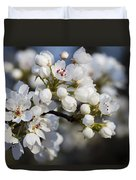Billows Of Fluffy White Bradford Pear Blossoms Duvet Cover