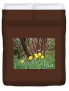 Birch And Daffiodils Duvet Cover
