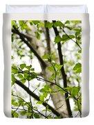 Birch Tree In Spring Duvet Cover