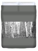 Birch Trees In A Forest, Acadia Duvet Cover