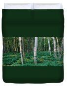 Birch Trees In A Forest Duvet Cover