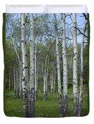 Birch Trees In A Grove No. 0148 Duvet Cover