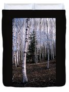 Birches Duvet Cover