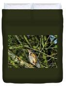 Bird - Baby Robin Duvet Cover