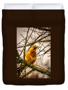 Bird Holding Food In Mouth Duvet Cover