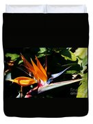 Grotto Bay Bird Of Paradise # 1 Duvet Cover