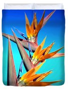 Bird Of Paradise 2013 Duvet Cover