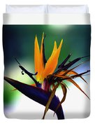 Bird Of Paradise Flower - Square Duvet Cover
