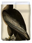 Bird Of Washington Duvet Cover by Celestial Images
