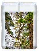 Bird On A Vine In Jungle Forest In Chitwan Np-nepal  Duvet Cover