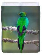 Bird Perching On A Branch, Savegre Duvet Cover