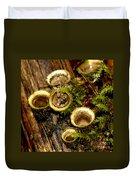 Birds Nest Fungi Duvet Cover