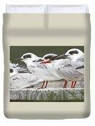 Birds On A Ledge Duvet Cover