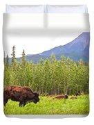 Bison Along Alaska Highway In British Columbia-canada Duvet Cover