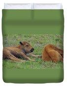 Bison Calves  Duvet Cover