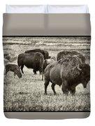 Bison Herd Bw Duvet Cover