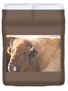 Bison Lick Duvet Cover
