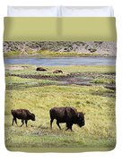 Bison Mother And Calf In Yellowstone National Park Duvet Cover