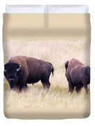 Bison Painting Duvet Cover