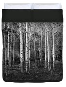 Black And White Photograph Of Birch Trees No. 0126 Duvet Cover