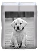 Black And White Puppy Duvet Cover