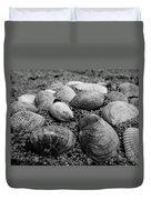 Black And White Seashells Duvet Cover
