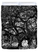 Black And White Trees Duvet Cover