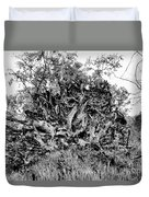 Black And White Uprooted Tree Duvet Cover