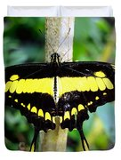 Black And Yellow Swallowtail Butterfly Duvet Cover