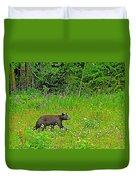Black Bear Along Yellowhead Highway-bc Duvet Cover