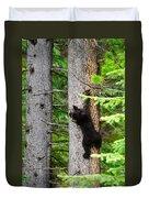 Black Bear Cub Climbing A Pine Tree Duvet Cover
