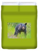 Black Bear Cub Near Road In Grand Teton National Park-wyoming Duvet Cover
