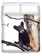Black Bear Cub Up In A Dead Tree In Northern Minnesota Duvet Cover