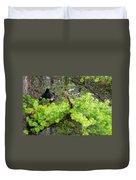 Black Bear Family In A Tree Duvet Cover